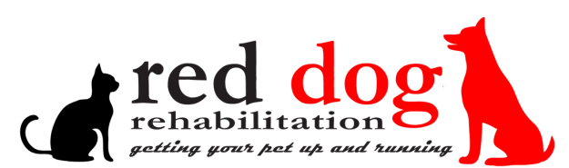red dog rehabilitation