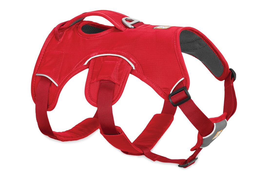 Webmaster harness - red